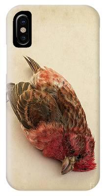 Bird Strike Phone Cases