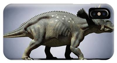 Diceratops Photographs iPhone Cases