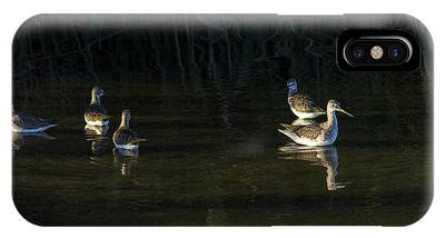 Digital Oil Of Sandpipers IPhone Case
