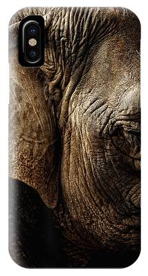 Dignity Of Age In Asian Elephant Study Phone Case by Lincoln Rogers