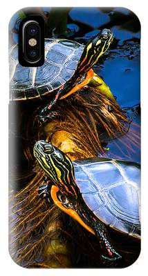 Painted Turtle Phone Cases