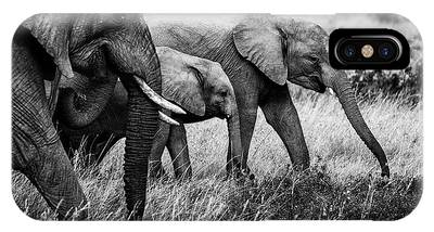 Amboseli Phone Cases