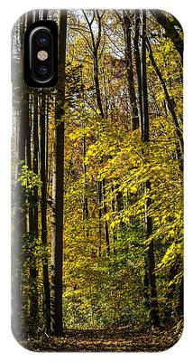 Fall Walk In The Woods IPhone Case