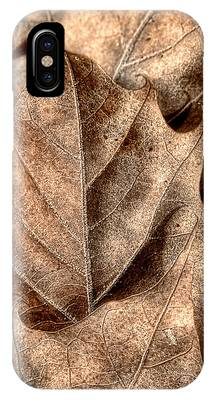 Fallen Leaf Phone Cases
