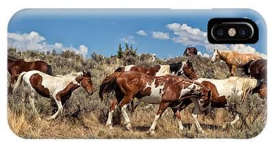 Red Dun Horse Phone Cases