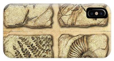 Fossil iPhone Cases
