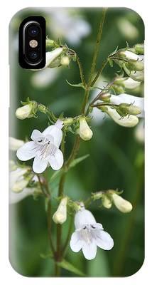 Foxglove Beardtongue IPhone Case