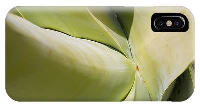 Giant Agave Abstract 9 IPhone Case