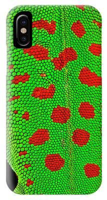 Gecko Phone Cases