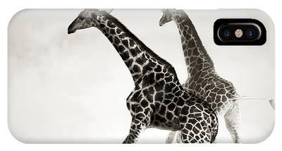 Giraffe Phone Cases