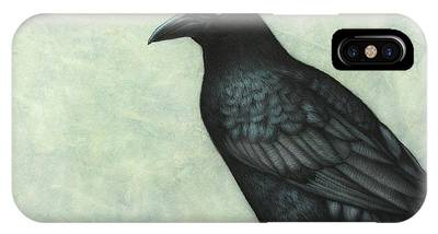 Raven Drawings iPhone Cases
