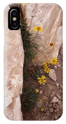 Grand Canyon Flowers IPhone Case