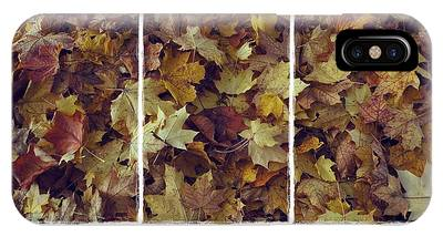 IPhone Case featuring the photograph Heavenly Leaves Triptych by Patricia Strand