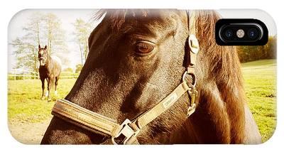 Horses Phone Cases