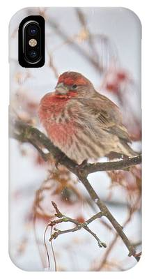 I Cannot Believe It Is So Cold IPhone Case