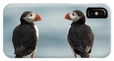 Puffin Phone Cases