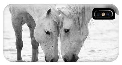 White Horse Photographs iPhone Cases