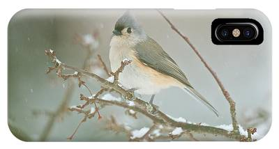 It May Be Cold But I Still Have My Looks IPhone Case