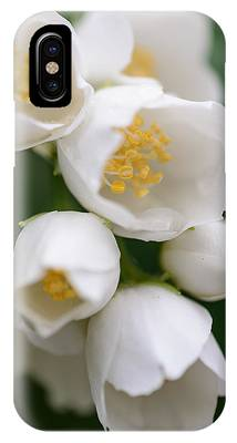 IPhone Case featuring the photograph Jasmin Flowers by Michael Goyberg