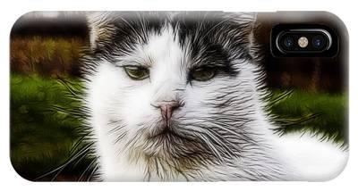 Kitty Kat IPhone Case