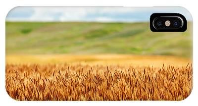 Wheat Phone Cases