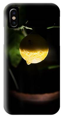 IPhone Case featuring the photograph Lemon's Planet by Michael Goyberg