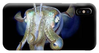 Squid Photographs iPhone Cases