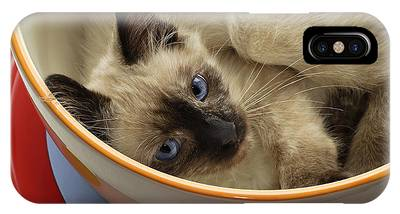 Andee Design Cat Eyes Phone Cases