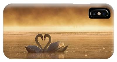 Hearts Phone Cases