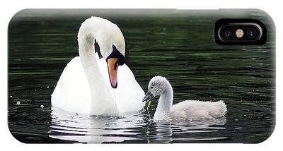 IPhone Case featuring the photograph Lunchtime For Swan And Cygnet by Rona Black