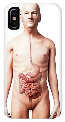 Esophagus Phone Cases