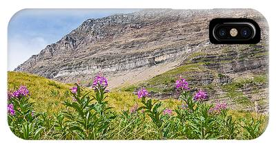 Meadow Of Fireweed Below The Continental Divide IPhone Case