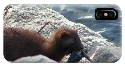 Mink With A Round Goby IPhone Case