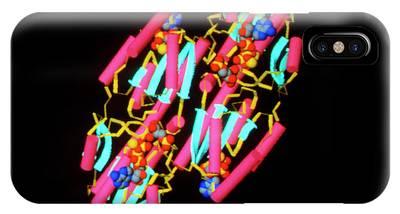 Molecular Biology Phone Cases