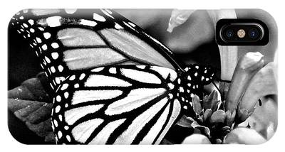 Monarch Perching IPhone Case