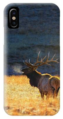 Yellowstone iPhone Cases