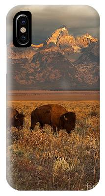 North American Wildlife Phone Cases
