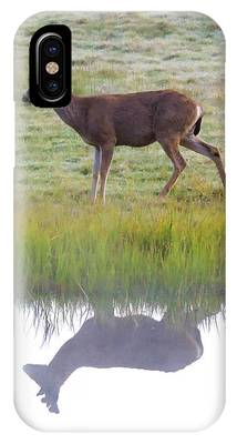 Mule Deer Reflection IPhone Case