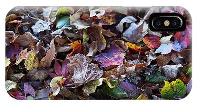 IPhone Case featuring the photograph Multicolored Autumn Leaves by Rona Black