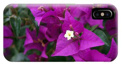 IPhone Case featuring the photograph New River Bougainvillea by Rona Black