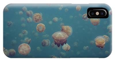 Micronesia iPhone Cases