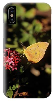 Sulfur Butterfly Phone Cases