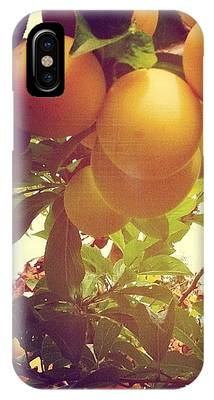 Food And Beverage iPhone Cases