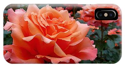 IPhone Case featuring the photograph Peach Roses by Rona Black