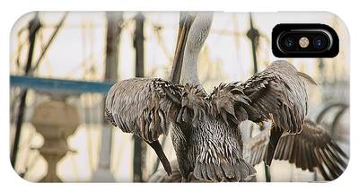 Pelican Strut IPhone Case