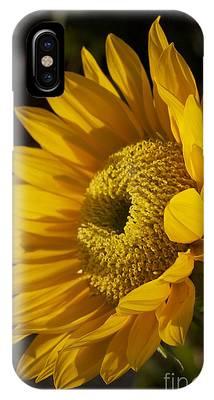 Sun-gold IPhone Case