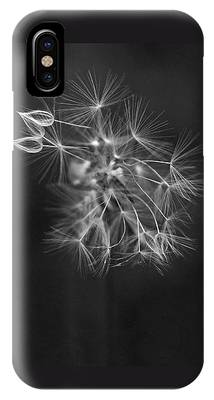 IPhone Case featuring the photograph Portrait Of A Dandelion by Rona Black