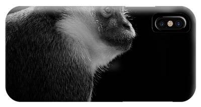 Monkey Phone Cases