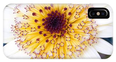 IPhone Case featuring the photograph Pot Marigold Citrus Smoothies by Richard J Thompson
