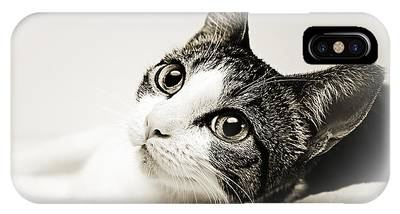 Andee Design Animal Phone Cases
